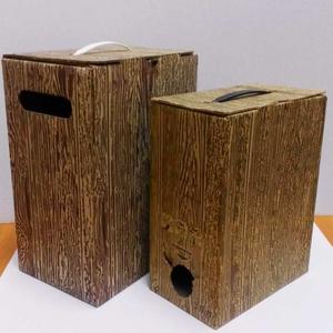 Коробки Bag in Box (бегинбокс) по цене от производителя